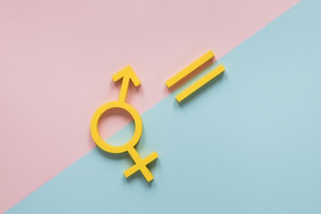 Les organisations et l'égalité entre les sexes